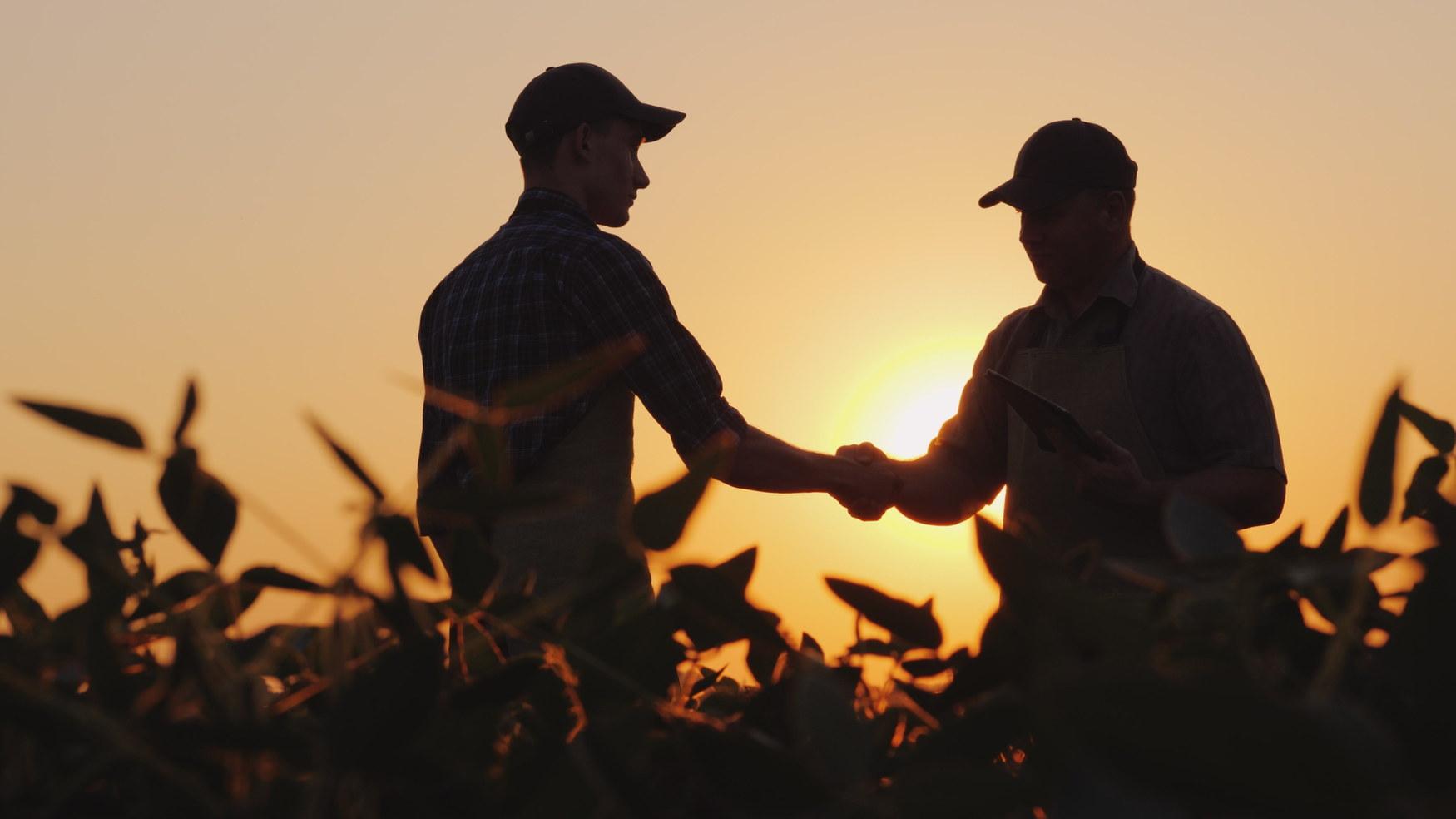 二人の農夫が畑で話し、手を振る